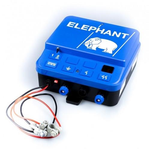 A25_elephan-500x500